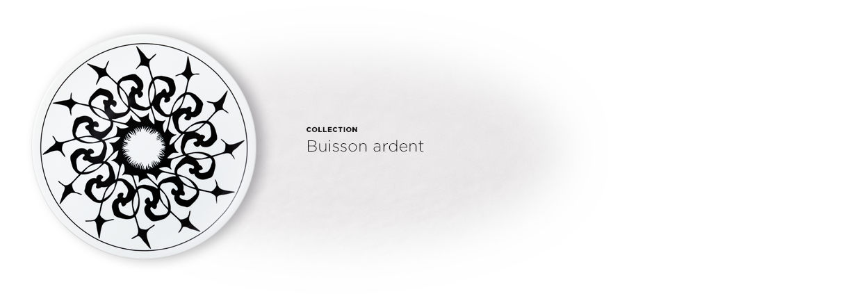 ACCORDEON-Buisson-ardent-1210x423