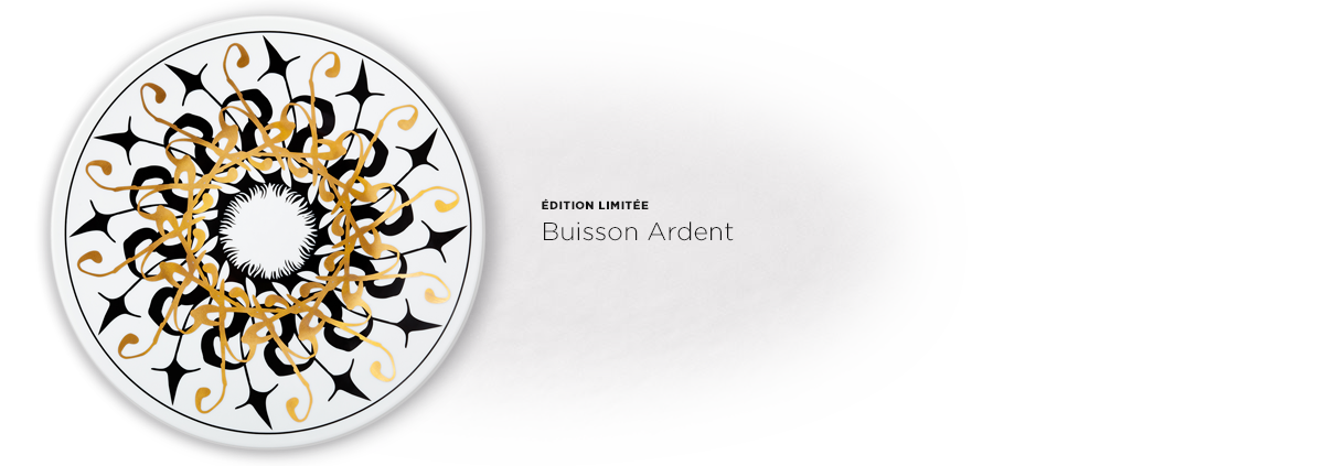 ACCORDEON-Buisson-ardent_ED-1210x423