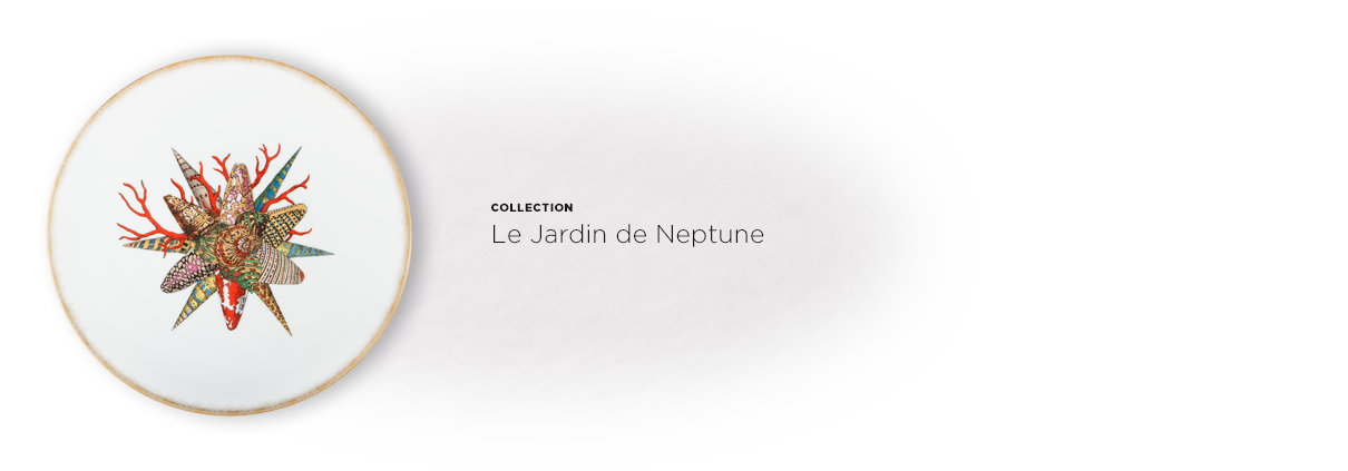 ACCORDEON-SERVICES-DE-TABLE--JNeptune