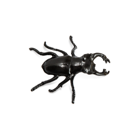 HN-SCN1_scarabee_noir